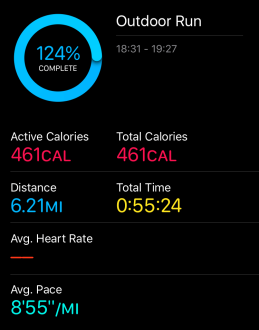 Apple Watch Activity Handling My Own Data Enabling Environments